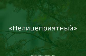"""""""Нелицеприятный"""": значение слова"""